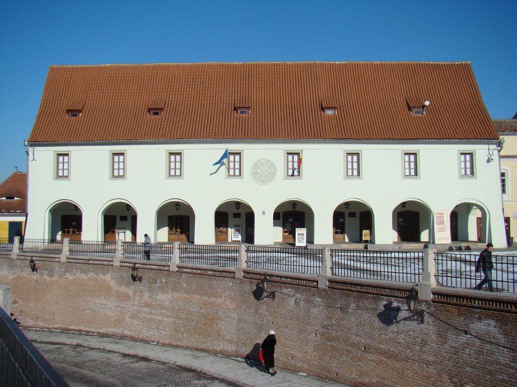 Piaţa Mică nr. 21, Casa Artelor